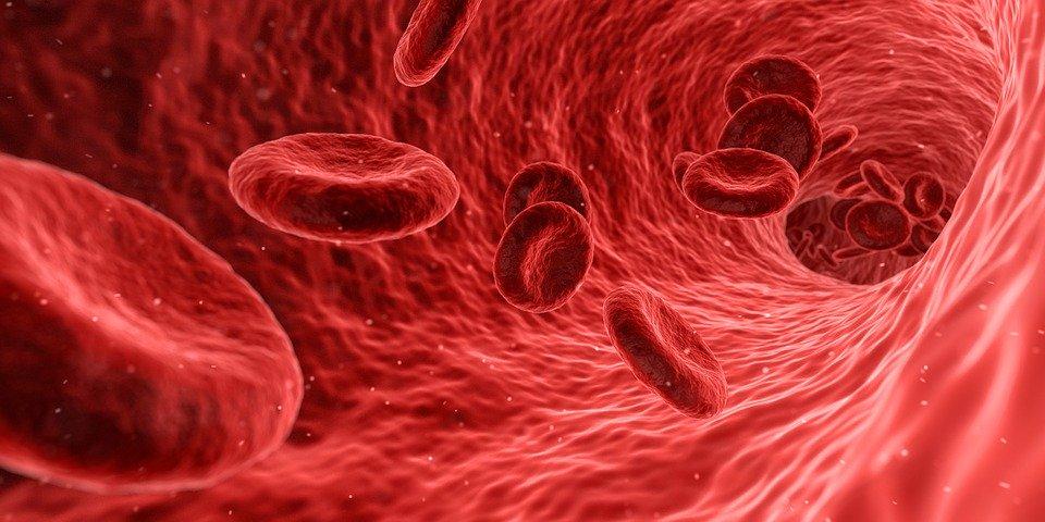 blood-1813410_960_720